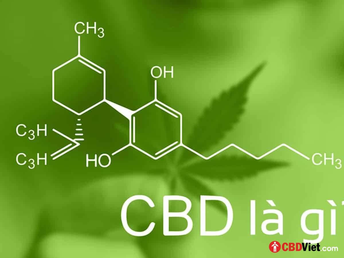 CBD là gì? - CBD Việt - Vietnam CBD Shop - cbdviet.com