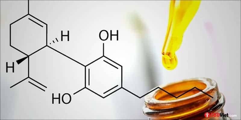 大麻CBDオイルとは何ですか? -ベトナムのCBD-cbdviet.com