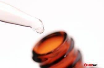 3 consejos para obtener la dosis correcta de CBD - CBD vietnamita - cbdviet.com