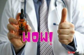 8 beneficios para la salud del CBD - CBD vietnamita - cbdviet.com