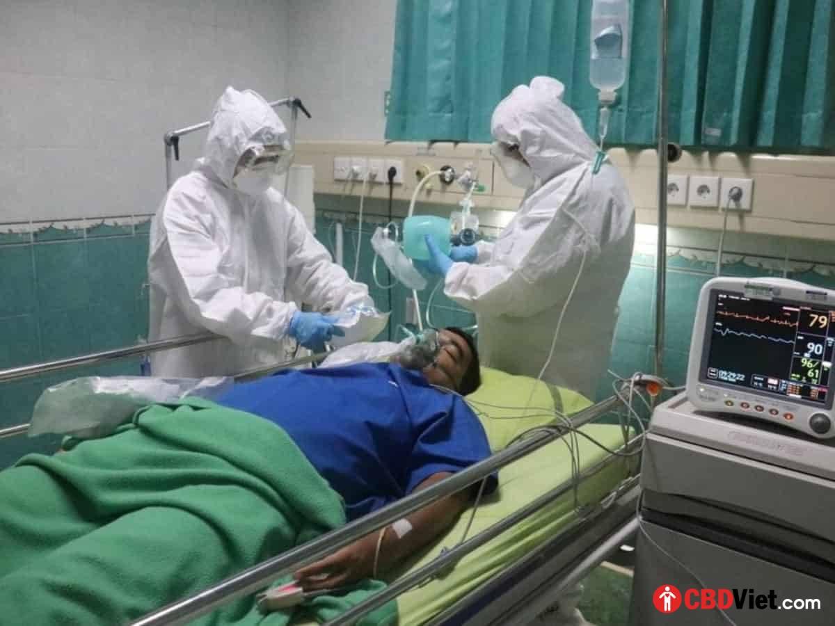 Các bác sĩ Israel cung cấp CBD cho bệnh nhân COVID-19 bị bệnh rất nặng, nhận được kết quả tích cực - CBD Việt - cbdviet.com